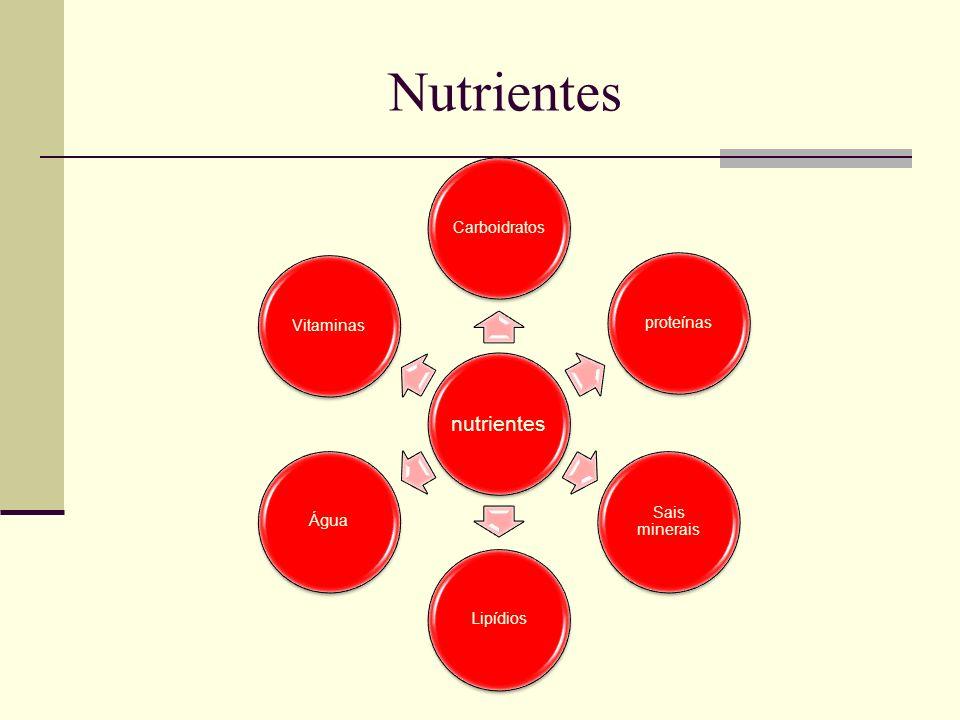 Nutrientes e suas funções Carboidratos São substâncias principalmente energéticas.