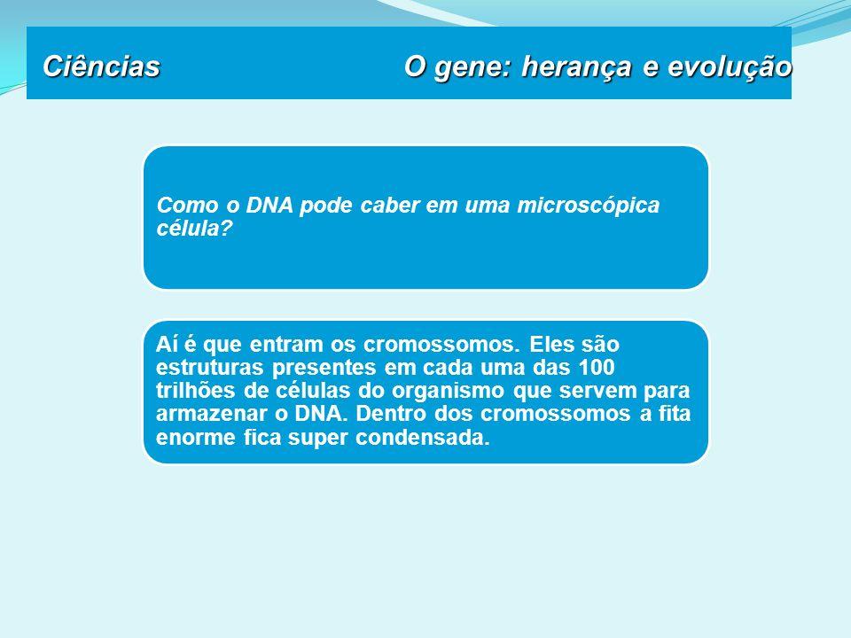 Como o DNA pode caber em uma microscópica célula.Aí é que entram os cromossomos.