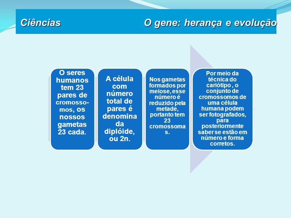 Ciências O gene: herança e evolução O seres humanos tem 23 pares de cromosso- mos, os nossos gametas 23 cada.