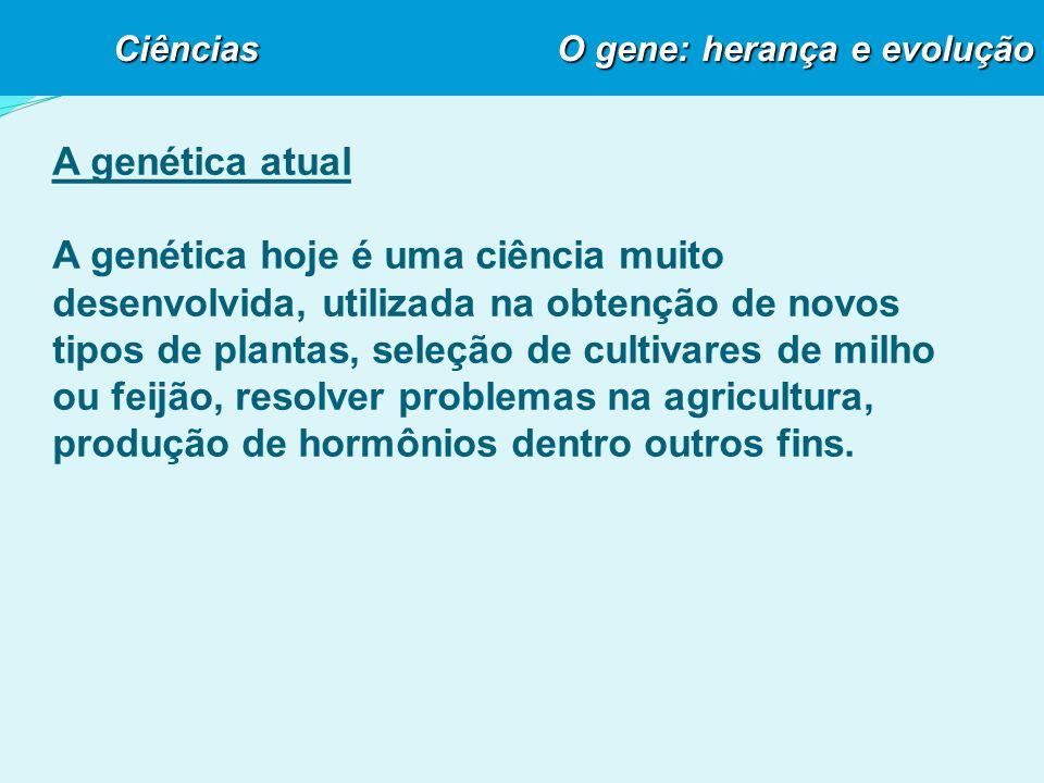 A genética atual A genética hoje é uma ciência muito desenvolvida, utilizada na obtenção de novos tipos de plantas, seleção de cultivares de milho ou feijão, resolver problemas na agricultura, produção de hormônios dentro outros fins.