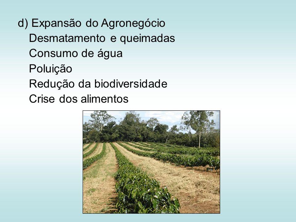 d) Expansão do Agronegócio Desmatamento e queimadas Consumo de água Poluição Redução da biodiversidade Crise dos alimentos