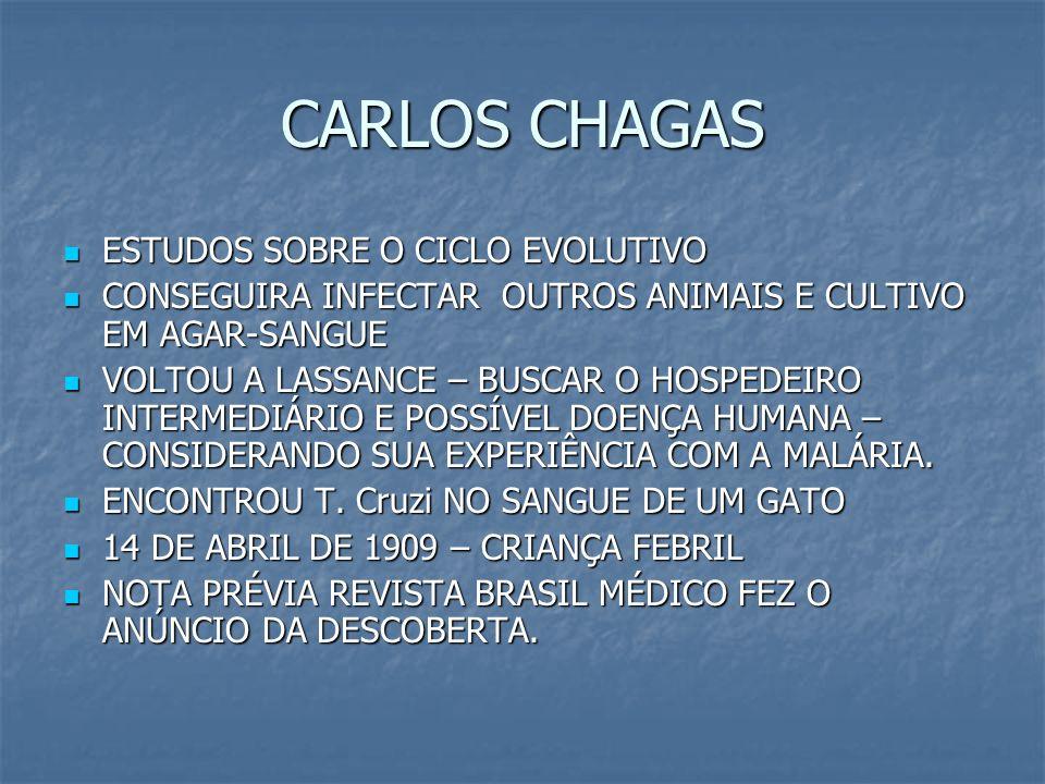 CARLOS CHAGAS ESTUDOS SOBRE O CICLO EVOLUTIVO ESTUDOS SOBRE O CICLO EVOLUTIVO CONSEGUIRA INFECTAR OUTROS ANIMAIS E CULTIVO EM AGAR-SANGUE CONSEGUIRA I