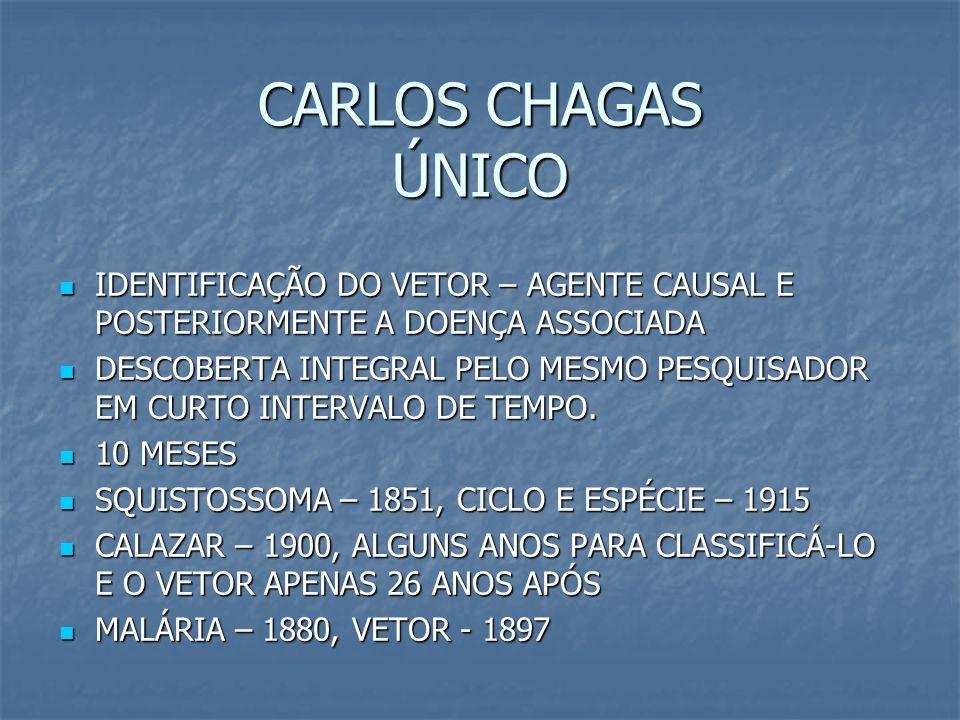 CARLOS CHAGAS ÚNICO IDENTIFICAÇÃO DO VETOR – AGENTE CAUSAL E POSTERIORMENTE A DOENÇA ASSOCIADA IDENTIFICAÇÃO DO VETOR – AGENTE CAUSAL E POSTERIORMENTE