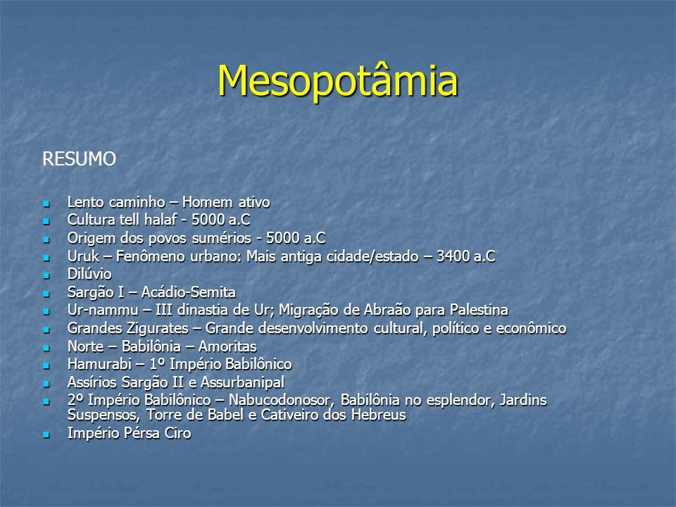 Mesopotâmia RESUMO Lento caminho – Homem ativo Lento caminho – Homem ativo Cultura tell halaf - 5000 a.C Cultura tell halaf - 5000 a.C Origem dos povo