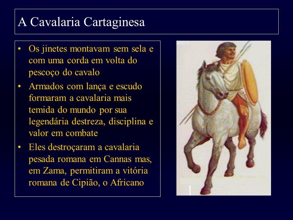 A Cavalaria Cartaginesa Os jinetes montavam sem sela e com uma corda em volta do pescoço do cavalo Armados com lança e escudo formaram a cavalaria mai