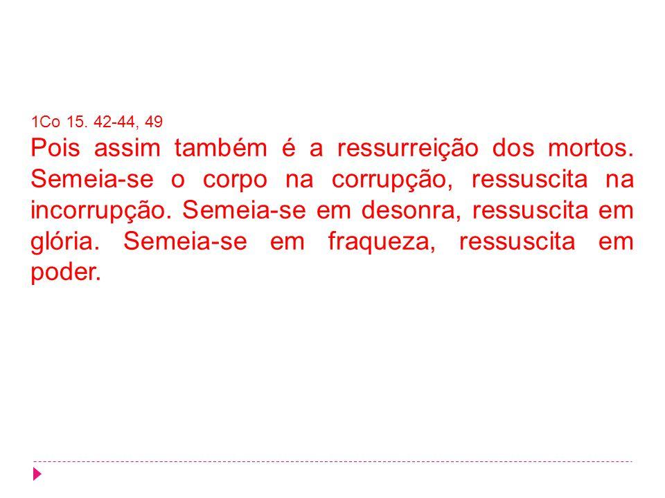 1Co 15. 42-44, 49 Pois assim também é a ressurreição dos mortos. Semeia-se o corpo na corrupção, ressuscita na incorrupção. Semeia-se em desonra, ress