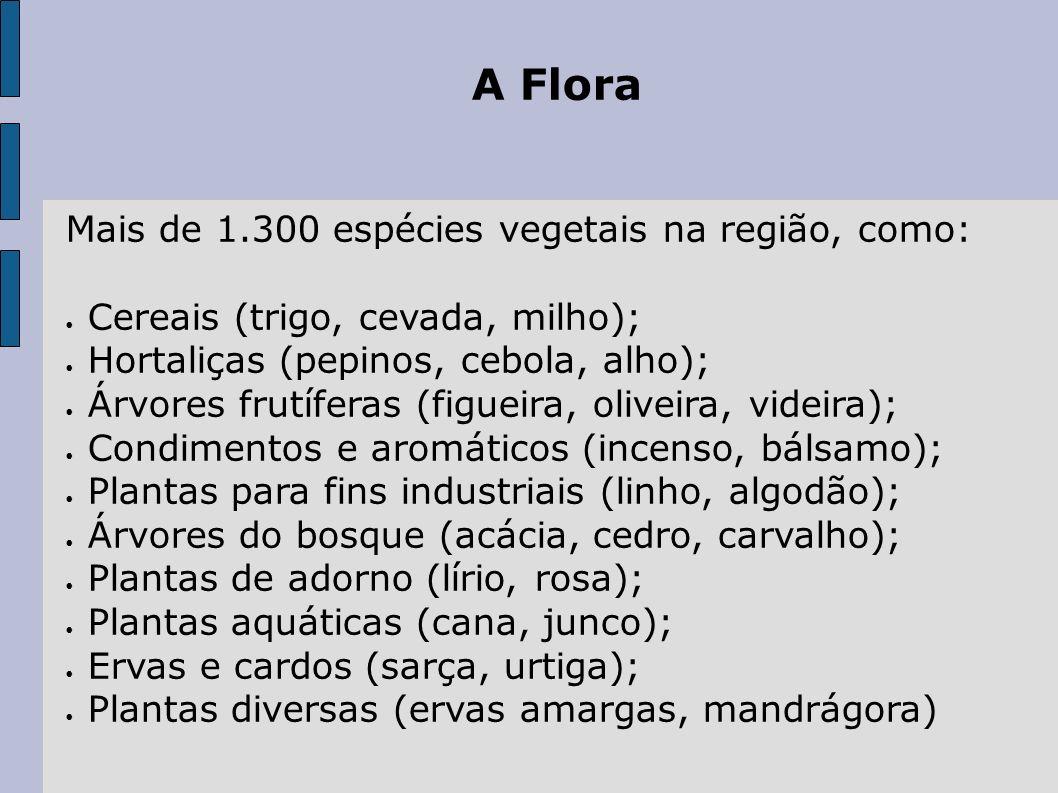 A Flora Mais de 1.300 espécies vegetais na região, como: Cereais (trigo, cevada, milho); Hortaliças (pepinos, cebola, alho); Árvores frutíferas (figue