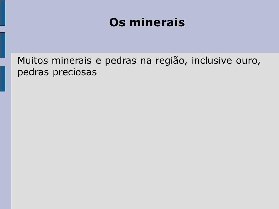 Os minerais Muitos minerais e pedras na região, inclusive ouro, pedras preciosas