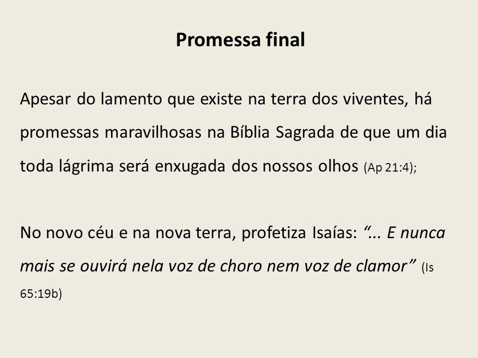 Promessa final Apesar do lamento que existe na terra dos viventes, há promessas maravilhosas na Bíblia Sagrada de que um dia toda lágrima será enxugad