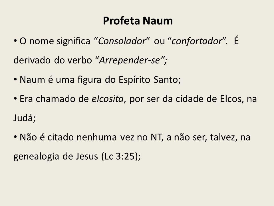 O nome significa Consolador ou confortador. É derivado do verbo Arrepender-se; Naum é uma figura do Espírito Santo; Era chamado de elcosita, por ser d