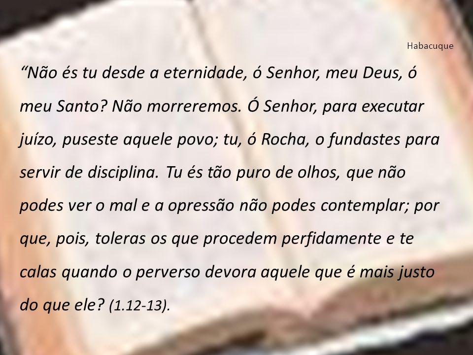 Habacuque Não és tu desde a eternidade, ó Senhor, meu Deus, ó meu Santo? Não morreremos. Ó Senhor, para executar juízo, puseste aquele povo; tu, ó Roc