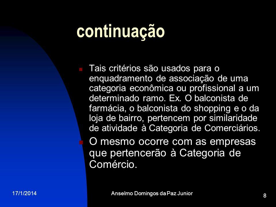 17/1/2014Anselmo Domingos da Paz Junior 8 continuação Tais critérios são usados para o enquadramento de associação de uma categoria econômica ou profi