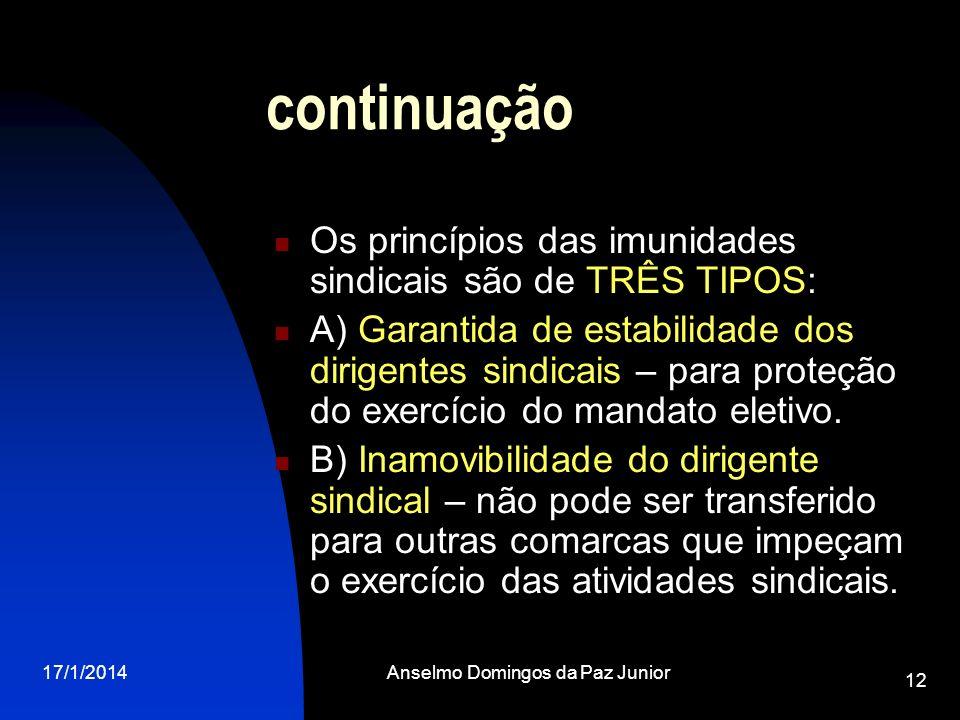 17/1/2014Anselmo Domingos da Paz Junior 12 continuação Os princípios das imunidades sindicais são de TRÊS TIPOS: A) Garantida de estabilidade dos diri