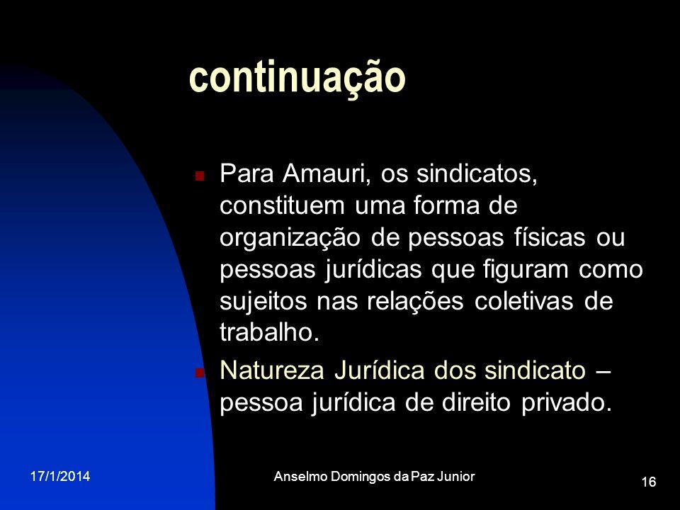 17/1/2014Anselmo Domingos da Paz Junior 16 continuação Para Amauri, os sindicatos, constituem uma forma de organização de pessoas físicas ou pessoas j
