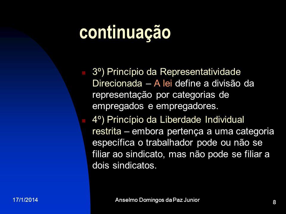 17/1/2014Anselmo Domingos da Paz Junior 8 continuação 3º) Princípio da Representatividade Direcionada – A lei define a divisão da representação por ca