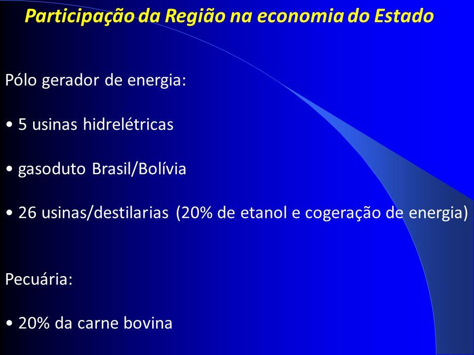Participação da Região na economia do Estado Pólo gerador de energia: 5 usinas hidrelétricas gasoduto Brasil/Bolívia 26 usinas/destilarias (20% de etanol e cogeração de energia) Pecuária: 20% da carne bovina