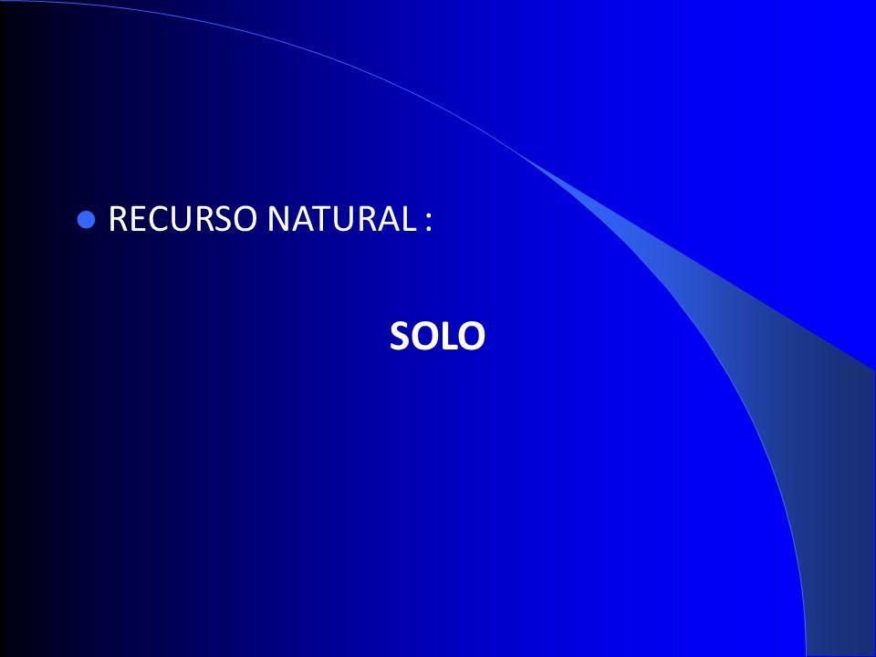 RECURSO NATURAL : SOLO