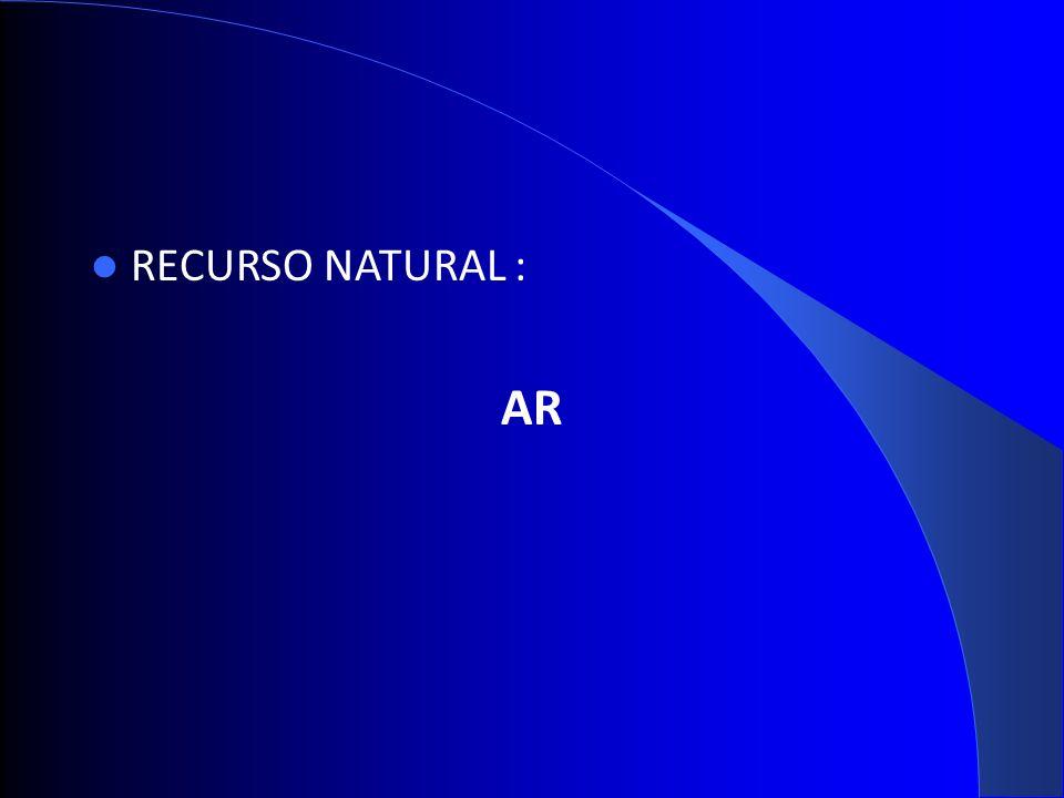 RECURSO NATURAL : AR