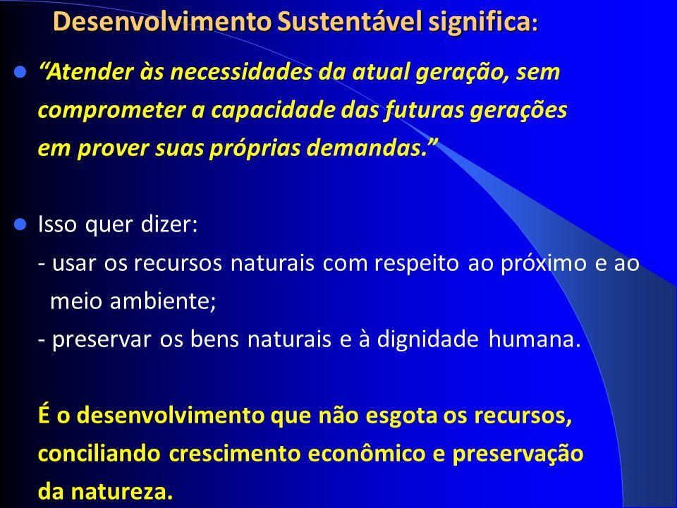 Desenvolvimento Sustentável significa : Atender às necessidades da atual geração, sem comprometer a capacidade das futuras gerações em prover suas próprias demandas.