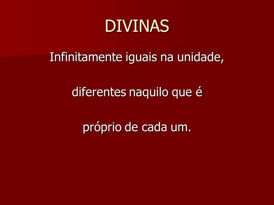 DIVINAS Infinitamente iguais na unidade, diferentes naquilo que é próprio de cada um.