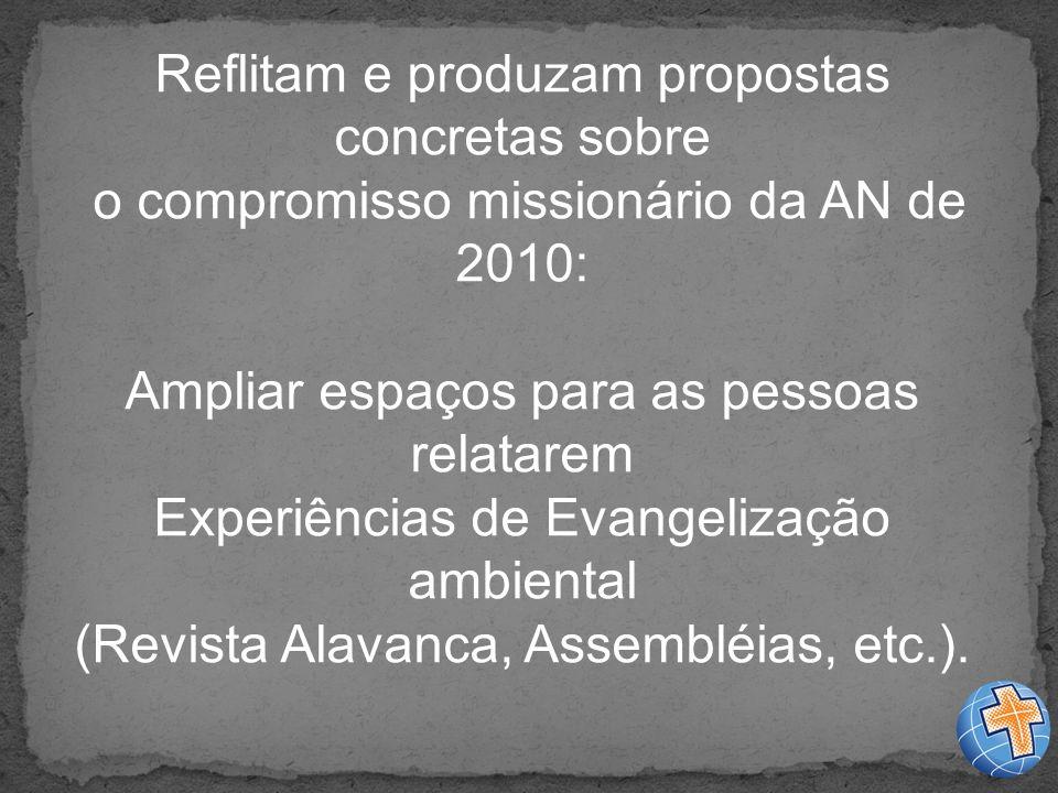 Reflitam e produzam propostas concretas sobre o compromisso missionário da AN de 2010: Ampliar espaços para as pessoas relatarem Experiências de Evangelização ambiental (Revista Alavanca, Assembléias, etc.).