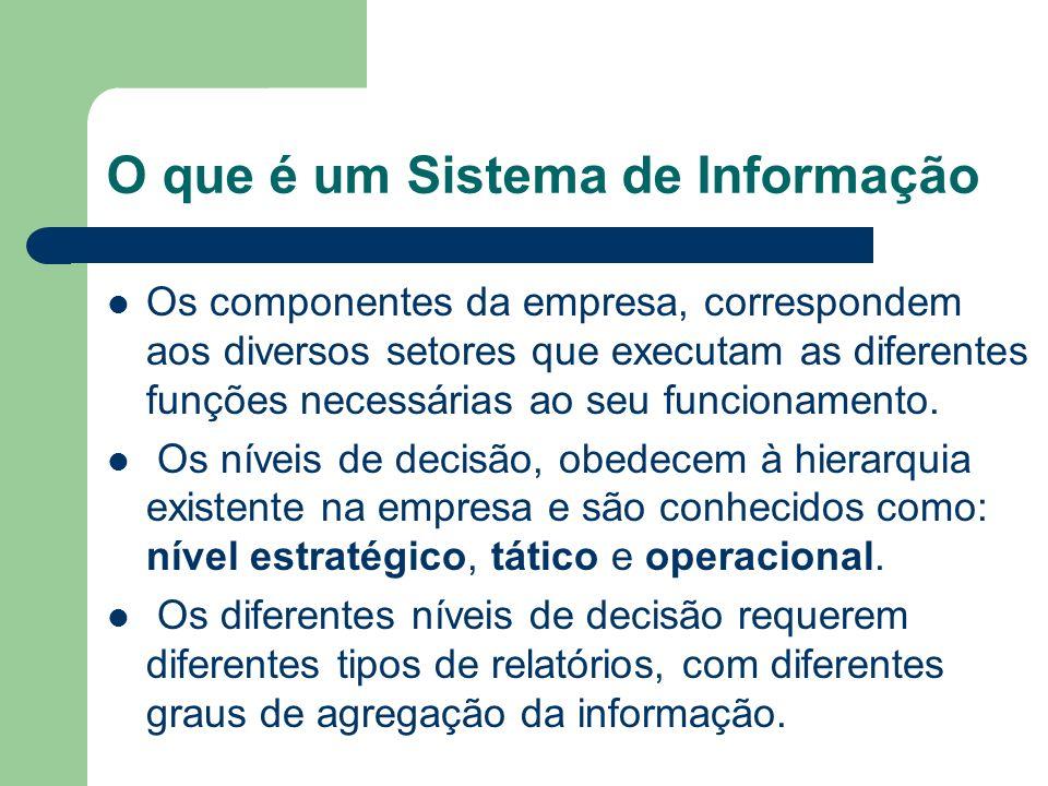 O que é um Sistema de Informação Os componentes da empresa, correspondem aos diversos setores que executam as diferentes funções necessárias ao seu fu