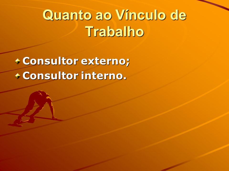 Quanto ao Vínculo de Trabalho Consultor externo; Consultor interno.