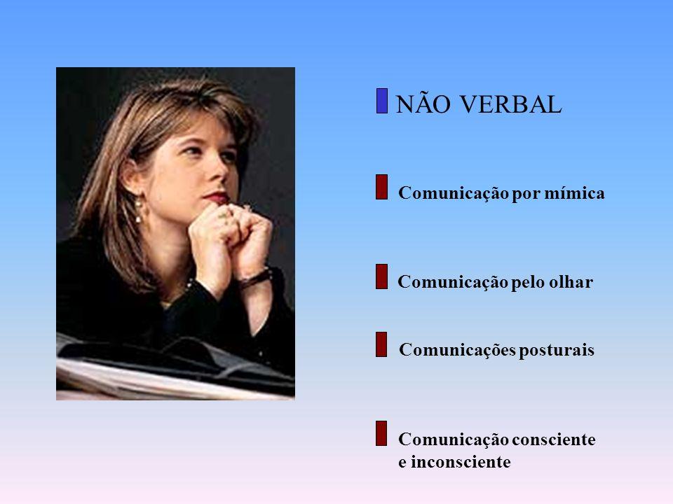 Comunicação verbal escrita. É o tipo de comunicação que não necessita da fala para ser compreendida!! Pode ser encontrada em revistas, cartazes, placa
