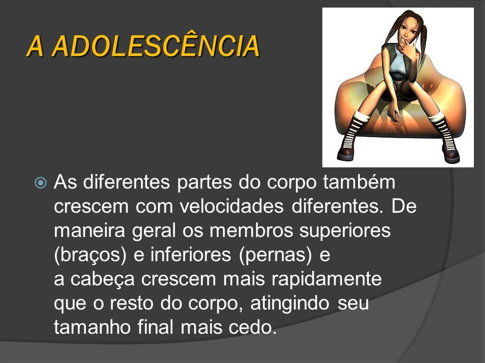 A ADOLESCÊNCIA As diferentes partes do corpo também crescem com velocidades diferentes. De maneira geral os membros superiores (braços) e inferiores (