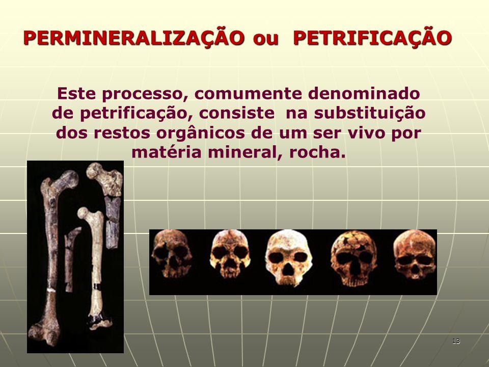 PERMINERALIZAÇÃO ou PETRIFICAÇÃO Este processo, comumente denominado de petrificação, consiste na substituição dos restos orgânicos de um ser vivo por