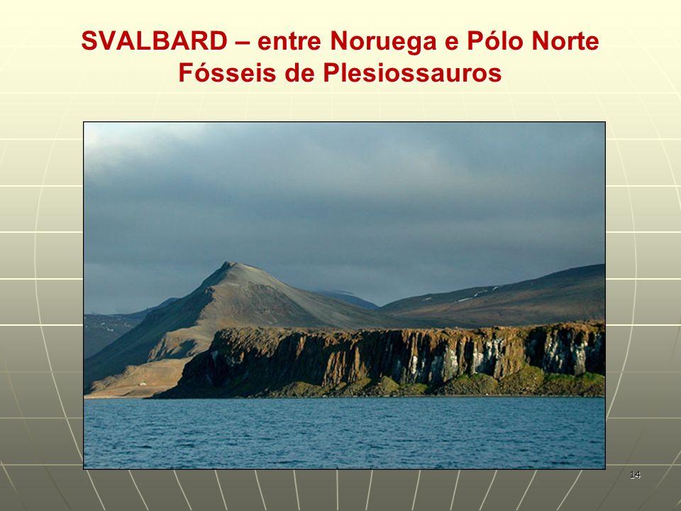 SVALBARD – entre Noruega e Pólo Norte Fósseis de Plesiossauros 14