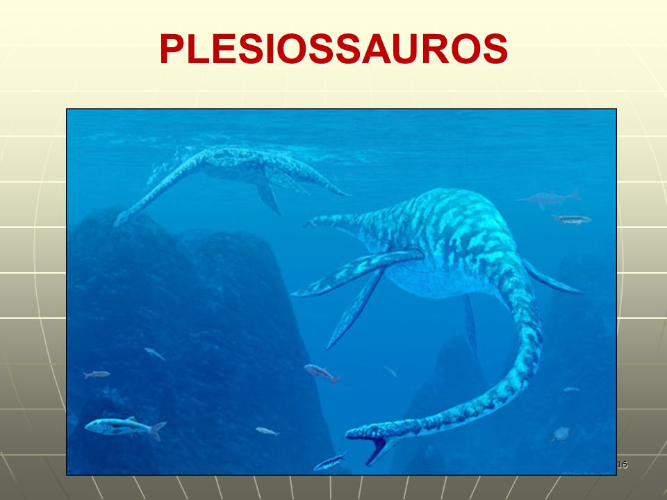 PLESIOSSAUROS 16