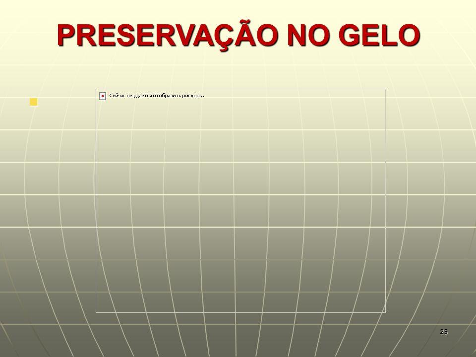 PRESERVAÇÃO NO GELO 25