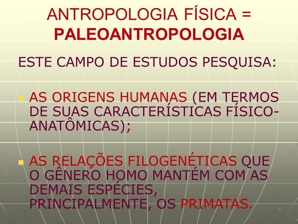 ANTROPOLOGIA FÍSICA = PALEOANTROPOLOGIA ESTE CAMPO DE ESTUDOS PESQUISA: AS ORIGENS HUMANAS (EM TERMOS DE SUAS CARACTERÍSTICAS FÍSICO- ANATÔMICAS); AS