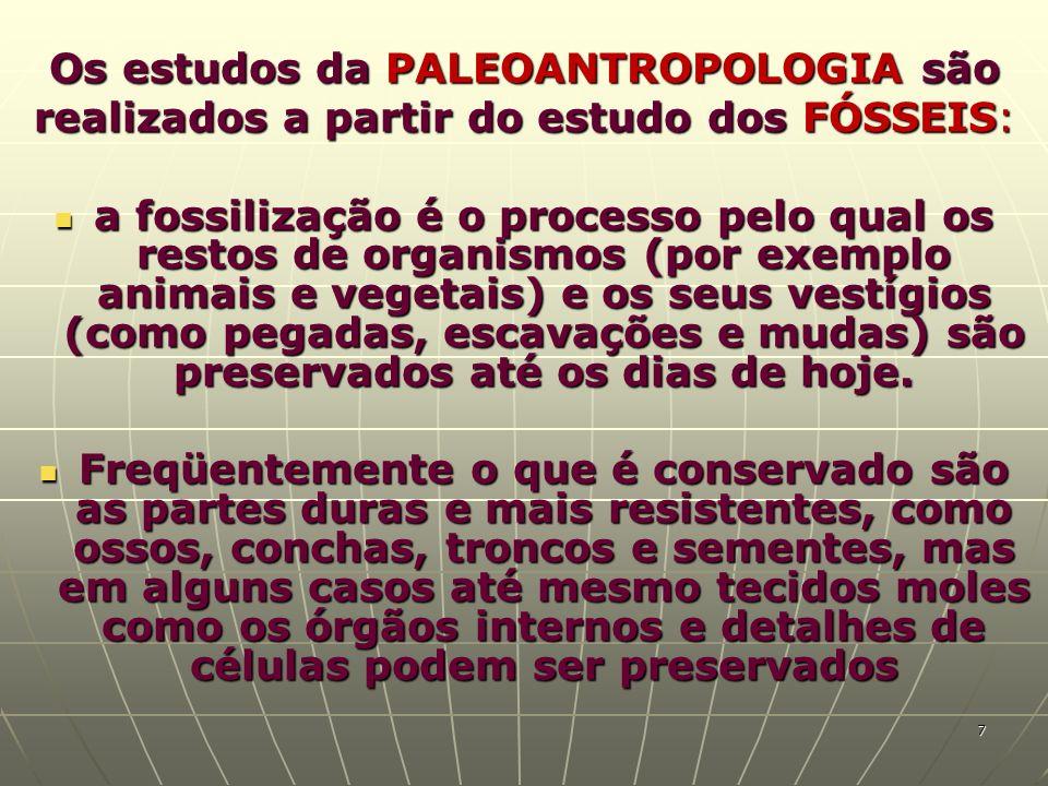 Os estudos da PALEOANTROPOLOGIA são realizados a partir do estudo dos FÓSSEIS: a fossilização é o processo pelo qual os restos de organismos (por exem