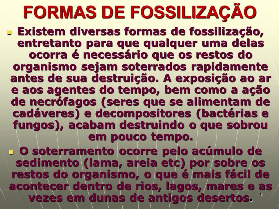 FORMAS DE FOSSILIZAÇÃO Existem diversas formas de fossilização, entretanto para que qualquer uma delas ocorra é necessário que os restos do organismo