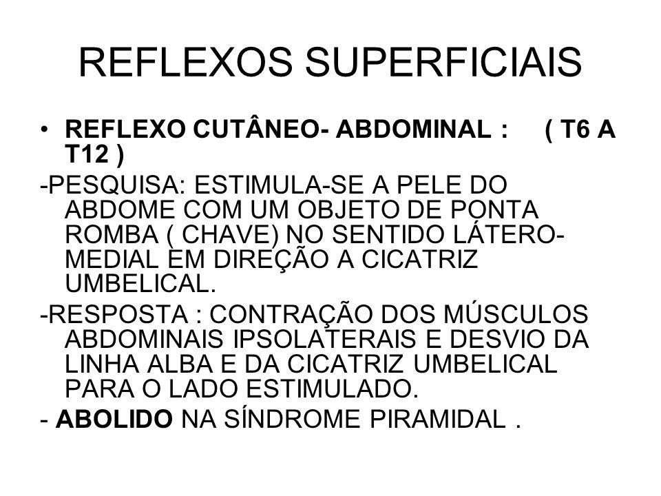 REFLEXOS SUPERFICIAIS REFLEXO CUTÂNEO- ABDOMINAL : ( T6 A T12 ) -PESQUISA: ESTIMULA-SE A PELE DO ABDOME COM UM OBJETO DE PONTA ROMBA ( CHAVE) NO SENTI