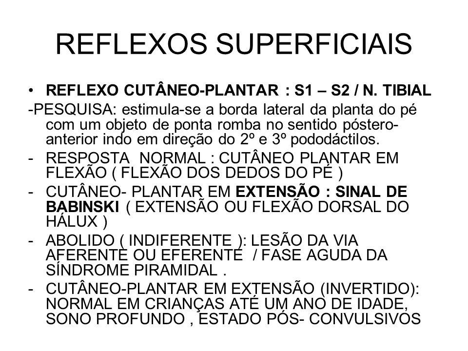 REFLEXOS SUPERFICIAIS REFLEXO CUTÂNEO-PLANTAR : S1 – S2 / N. TIBIAL -PESQUISA: estimula-se a borda lateral da planta do pé com um objeto de ponta romb