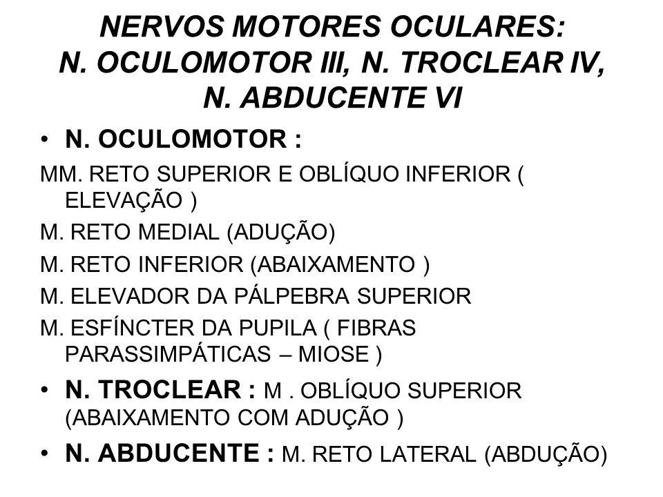 NERVOS MOTORES OCULARES: N. OCULOMOTOR III, N. TROCLEAR IV, N. ABDUCENTE VI N. OCULOMOTOR : MM. RETO SUPERIOR E OBLÍQUO INFERIOR ( ELEVAÇÃO ) M. RETO