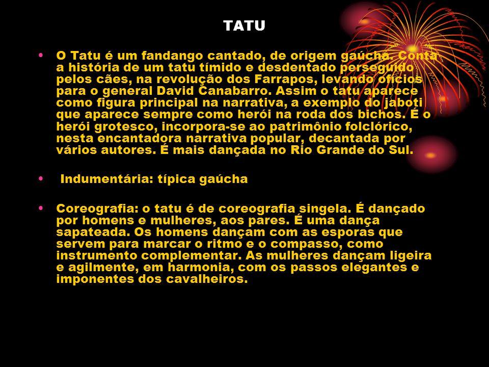 TATU O Tatu é um fandango cantado, de origem gaúcha. Conta a história de um tatu tímido e desdentado perseguido pelos cães, na revolução dos Farrapos,