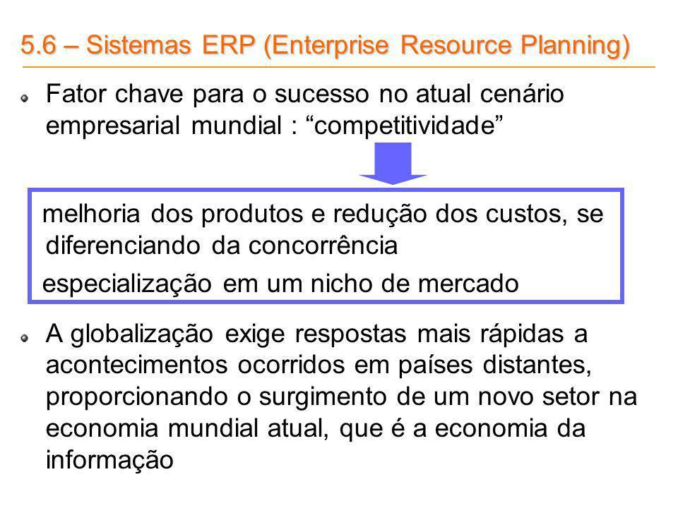 5.6 – Sistemas ERP (Enterprise Resource Planning) Fator chave para o sucesso no atual cenário empresarial mundial : competitividade melhoria dos produ