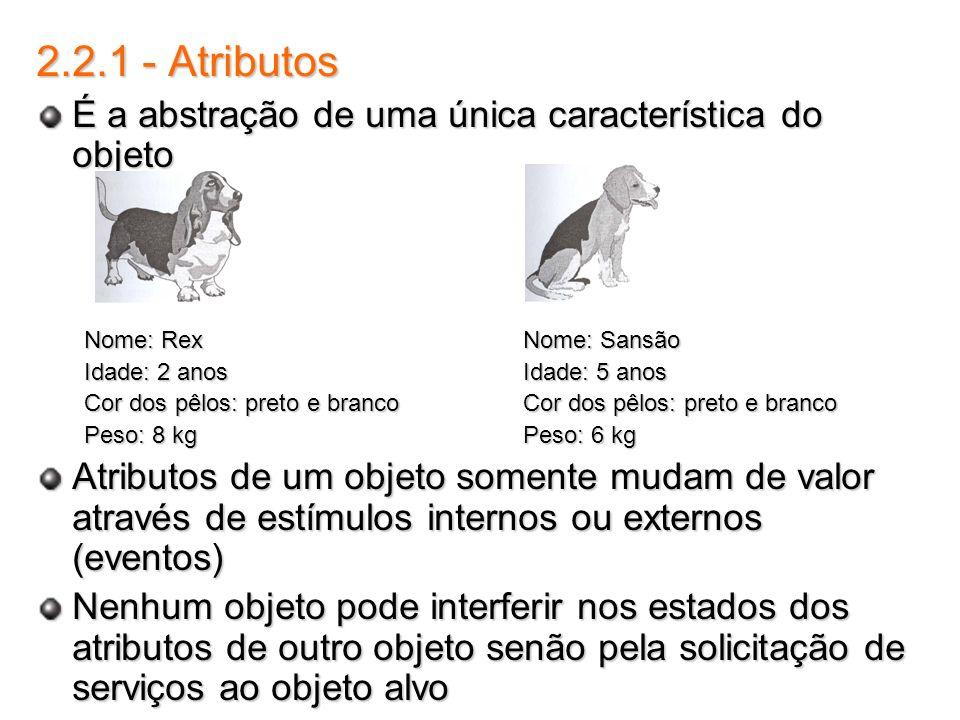 2.2.1 - Atributos É a abstração de uma única característica do objeto Nome: Rex Nome: Sansão Idade: 2 anos Idade: 5 anos Cor dos pêlos: preto e branco