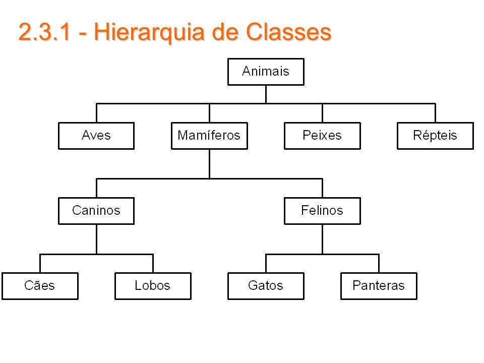 2.3.1 - Hierarquia de Classes