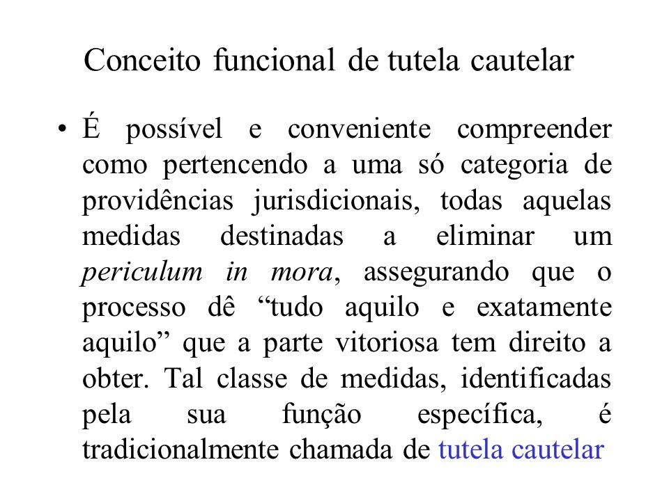 Conceito funcional de tutela cautelar É possível e conveniente compreender como pertencendo a uma só categoria de providências jurisdicionais, todas a