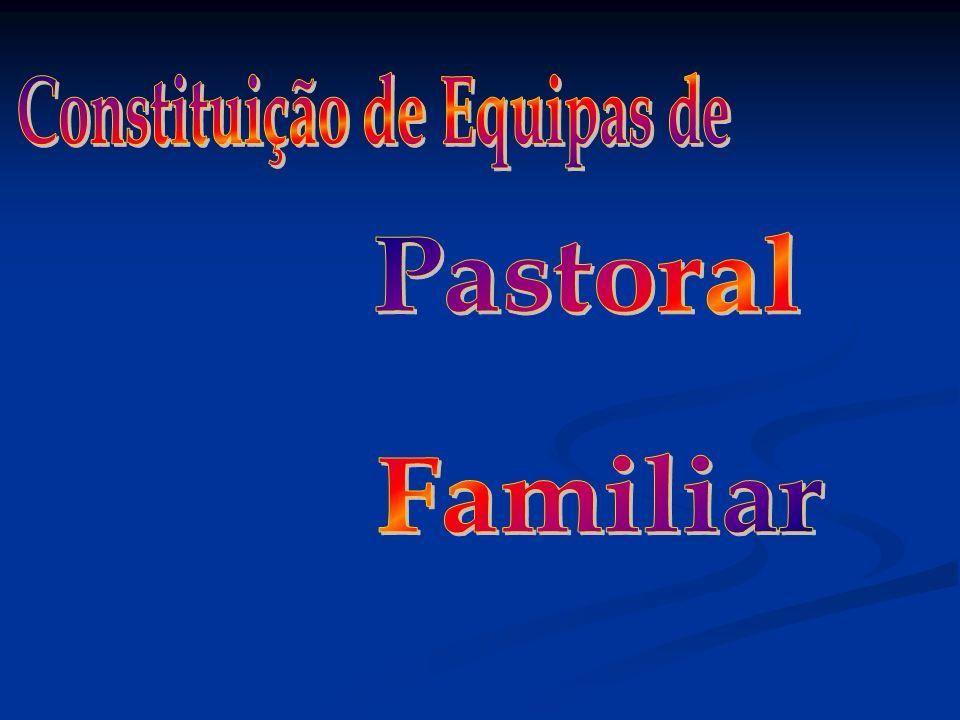 Estrutura Orgânica e Funcional da Pastoral Familiar Departamento Diocesano Pastoral Familiar...........................................................................................