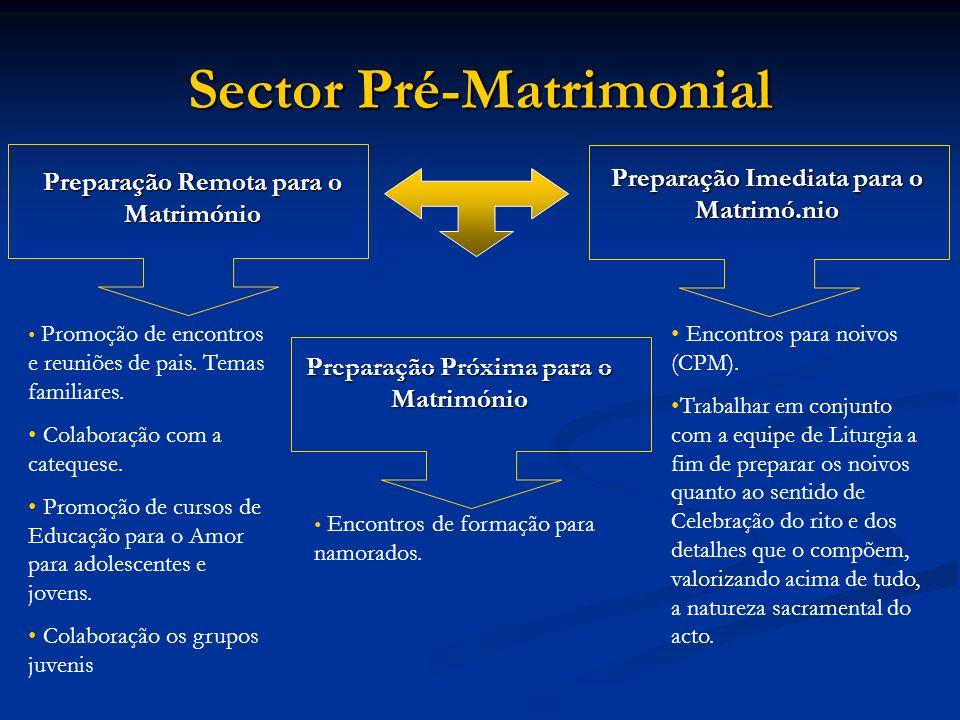 Preparação Próxima para o Matrimónio Preparação Remota para o Matrimónio Promoção de encontros e reuniões de pais. Temas familiares. Colaboração com a