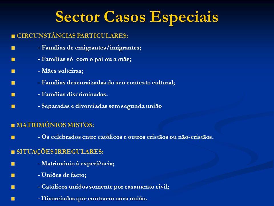Sector Casos Especiais CIRCUNSTÂNCIAS PARTICULARES: - Famílias de emigrantes/imigrantes; - Famílias só com o pai ou a mãe; - Mães solteiras; - Família