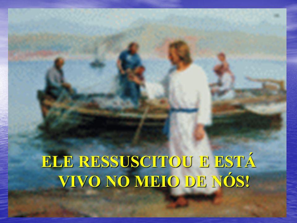 CRISTO É O CAMINHO, A VERDADE E A VIDA! (JO 14, 6)
