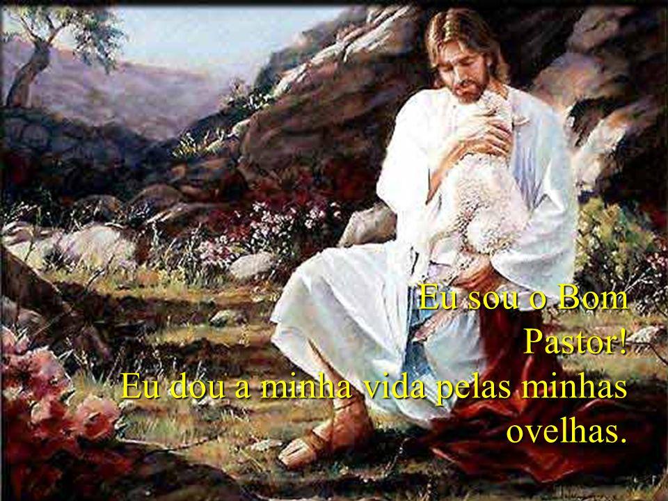 Eu sou a ressurreição e a Vida! A vontade do meu Pai é esta: que eu não perca nenhum daqueles e daquelas que ele me deu, mas o ressuscite, a ressuscit