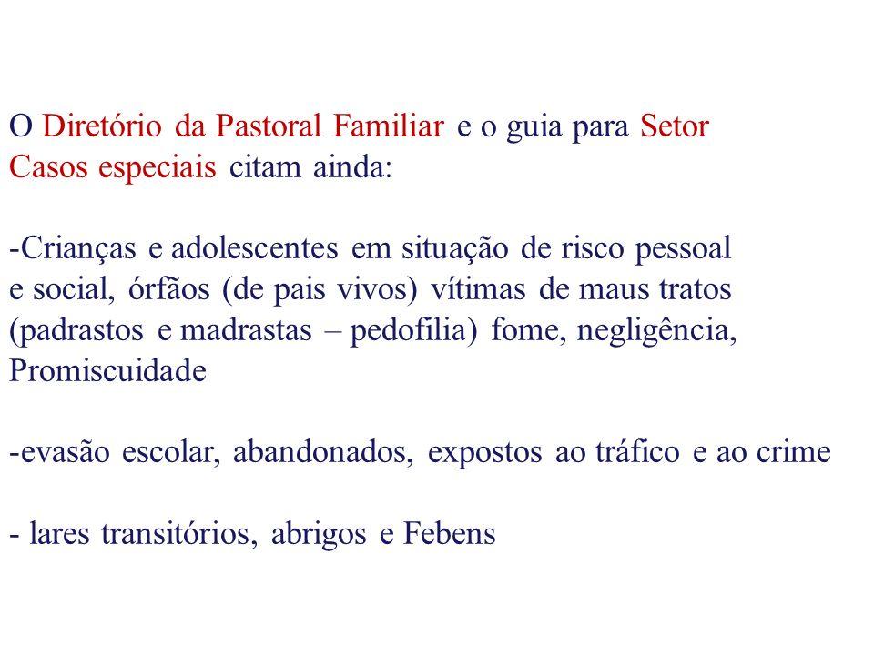O Diretório da Pastoral Familiar e o guia para Setor Casos especiais citam ainda: -Crianças e adolescentes em situação de risco pessoal e social, órfã